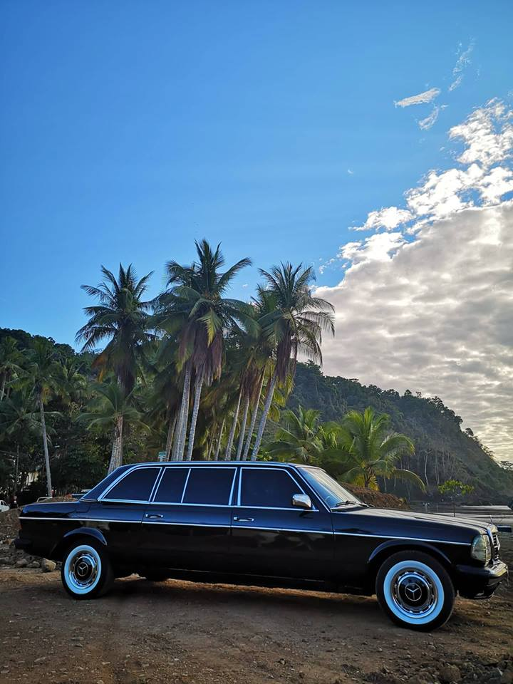 JACO-BEACH-PALM-TREE-LIMOUSINE-COSTA-RICA8761ebc290b3d838.jpg